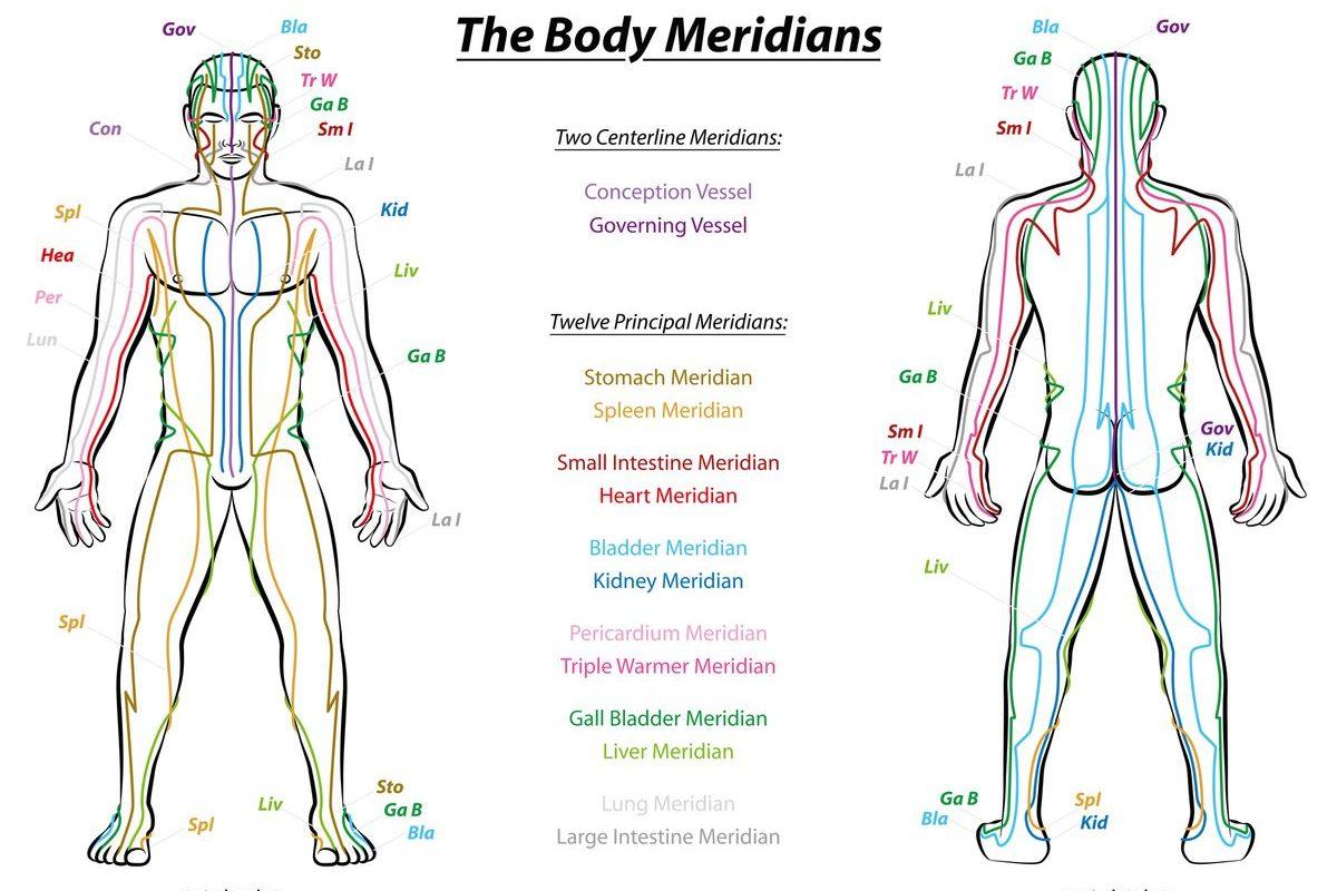 Méridiens en acupuncture, médecine chinoise et kinésiologie
