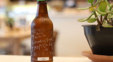 Le Kombucha, la boisson tendance : avantages et risques