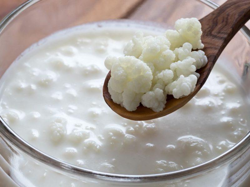 Kéfir de fruit et Kéfir de lait : quelles différences ? Pourquoi en consommer ?