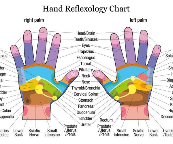 En quoi consiste la réflexologie palmaire et quels sont ses bienfaits