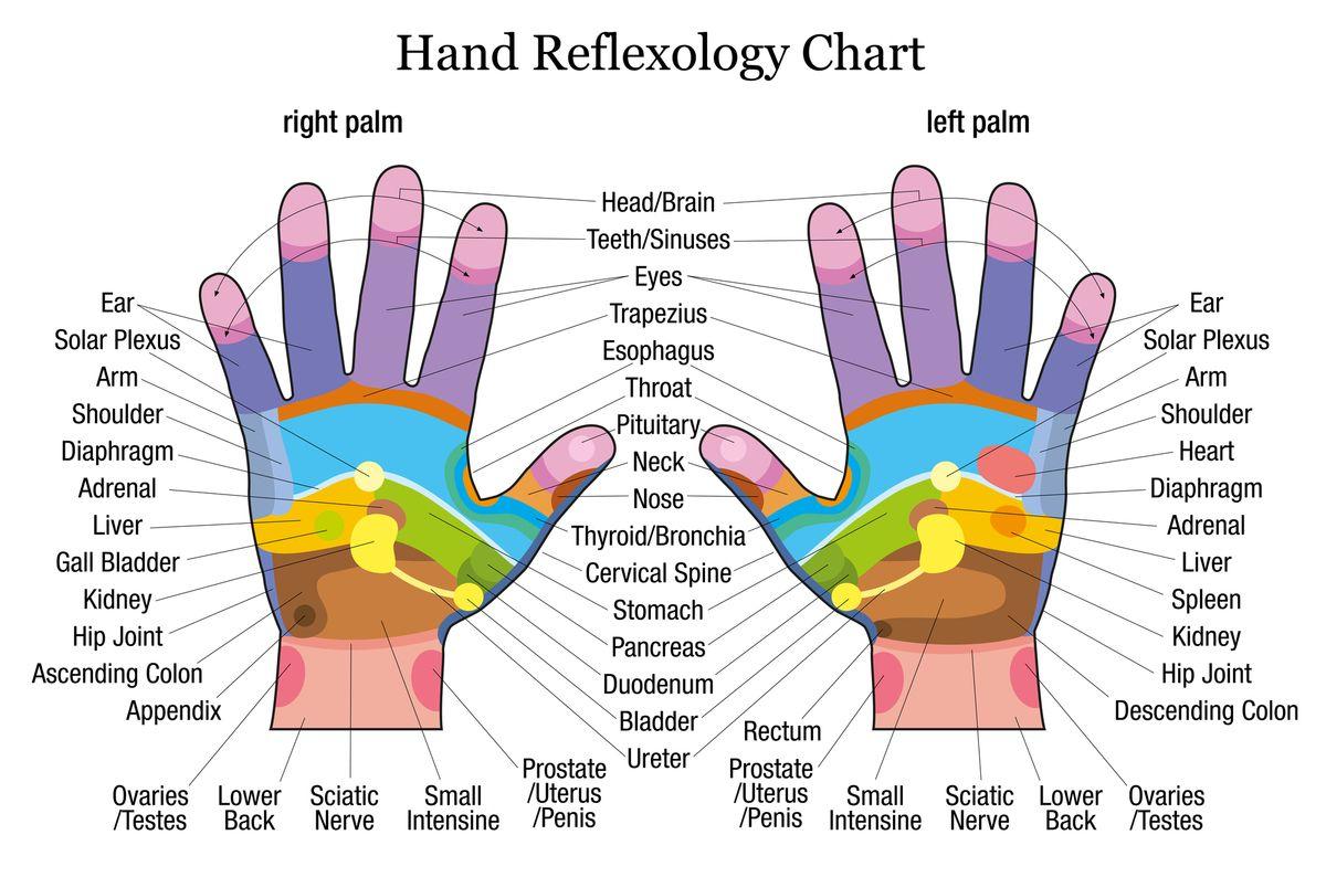 réflexologie main